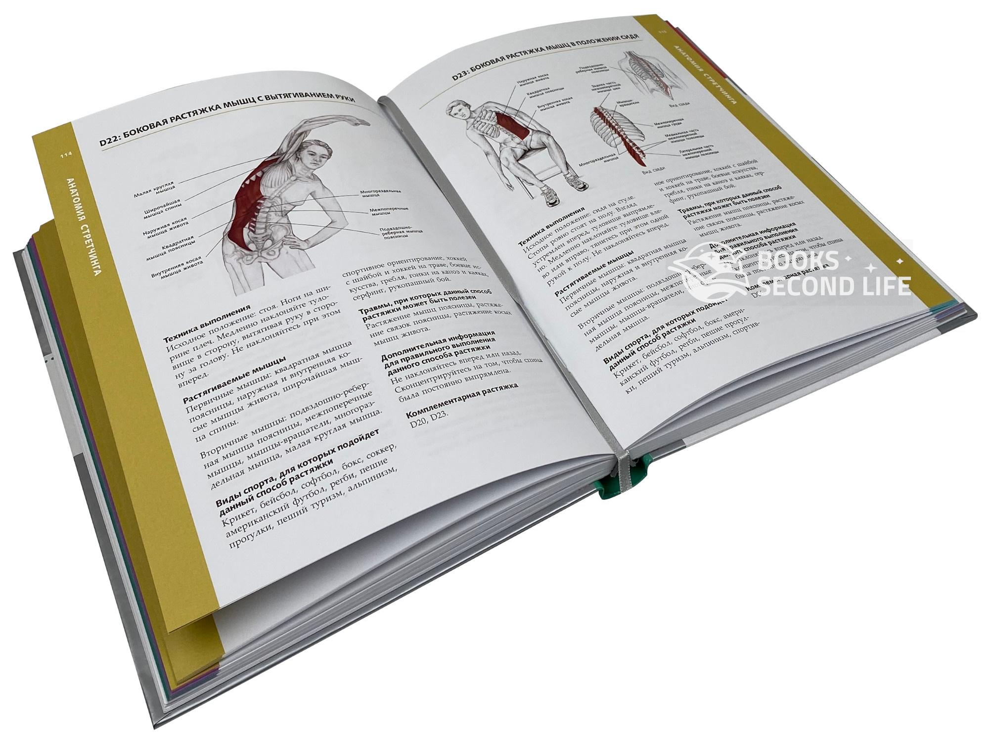 Анатомия стретчинга. Большая иллюстрированная энциклопедия. Автор — Брэд Уолкер. Переплет —