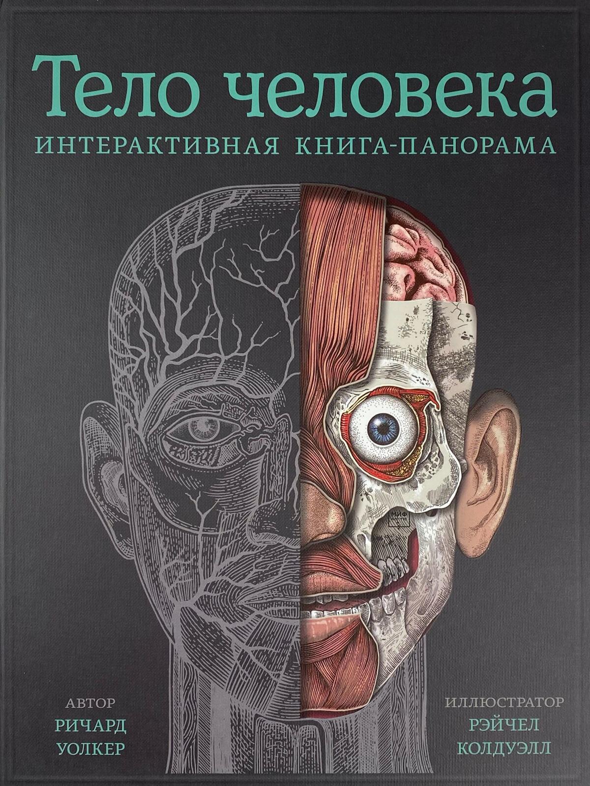 Тело человека. Интерактивная книга-панорама