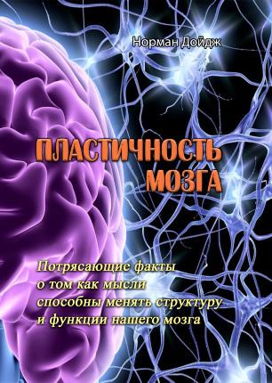 Пластичность мозга. Потрясающие факты о том как мысли способны менять структуру и функции нашего мозга