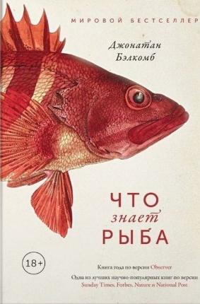 Что знает рыба. Внутренний мир наших подводных собратьев. Автор — Джонатан Бэлкомб. Переплет —