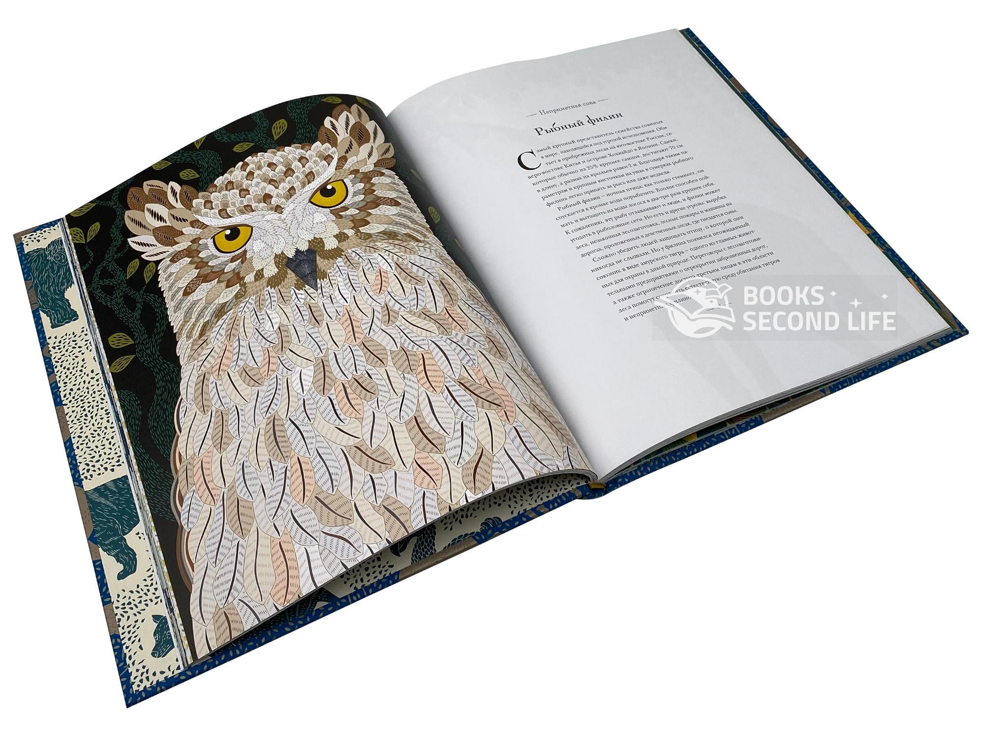 Книга исчезающих животных для неравнодушных сердец. Автор — Милли Маротта. Переплет —