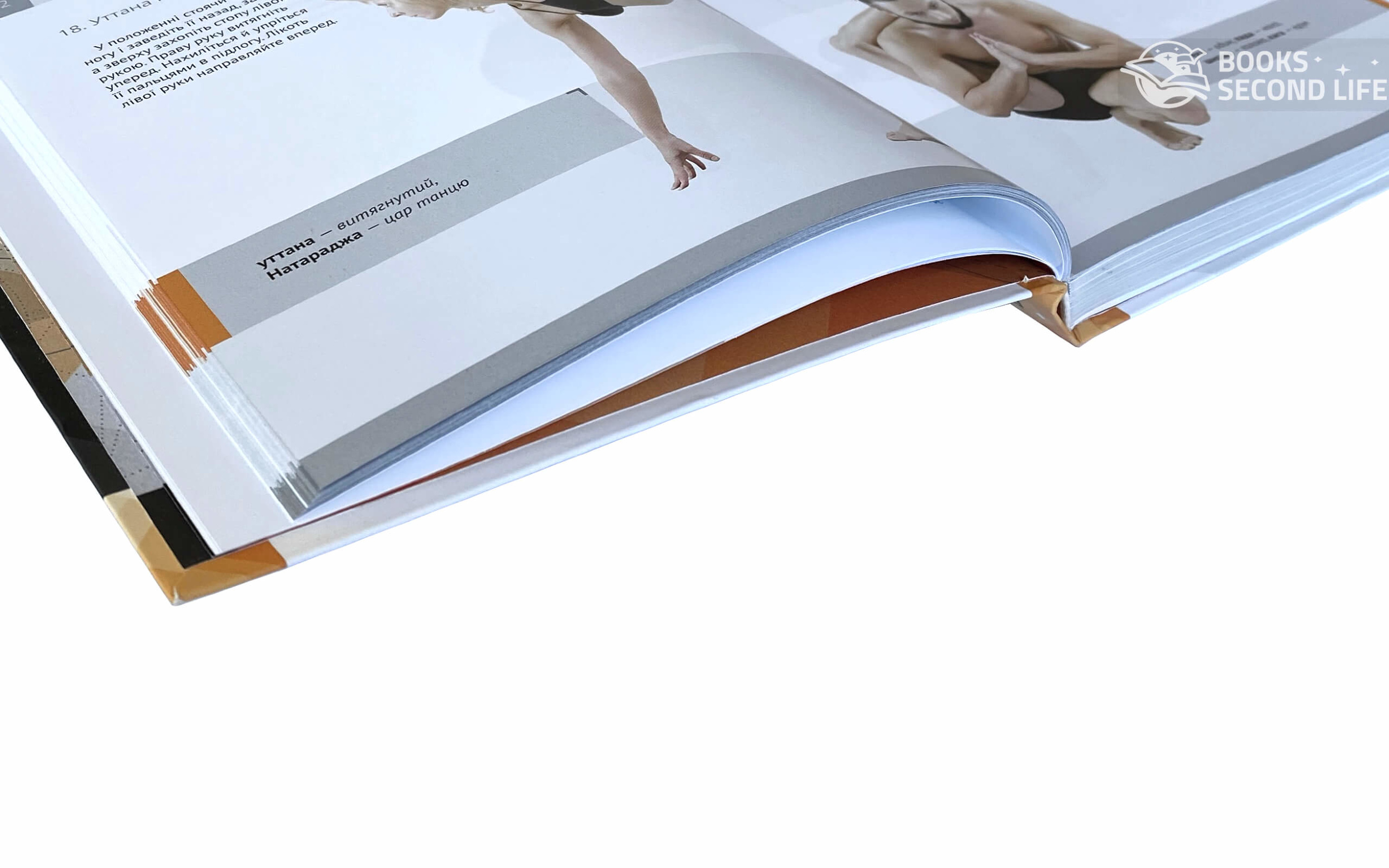 Хатха-йога Ілюстрована енциклопедія асан . Автор — Валентина Малиновская, Игорь Ткачев. Переплет —