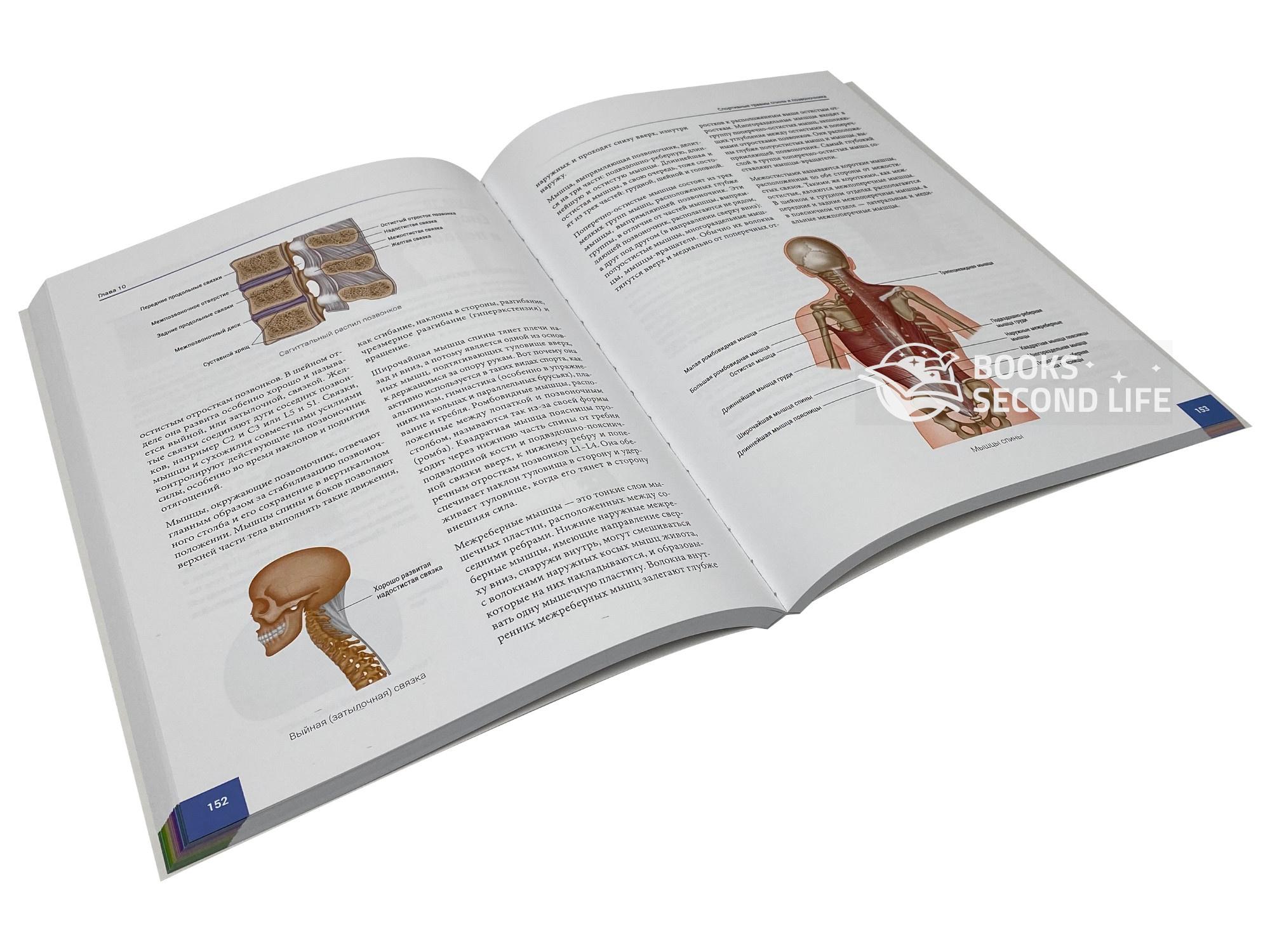 Анатомия спортивных травм. Автор — Брэд Уолкер.