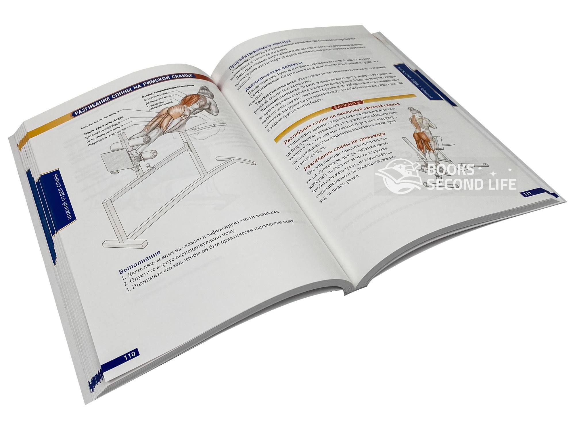 Анатомия бодибилдинга (новая редакция). Автор — Ник Эванс. Переплет —
