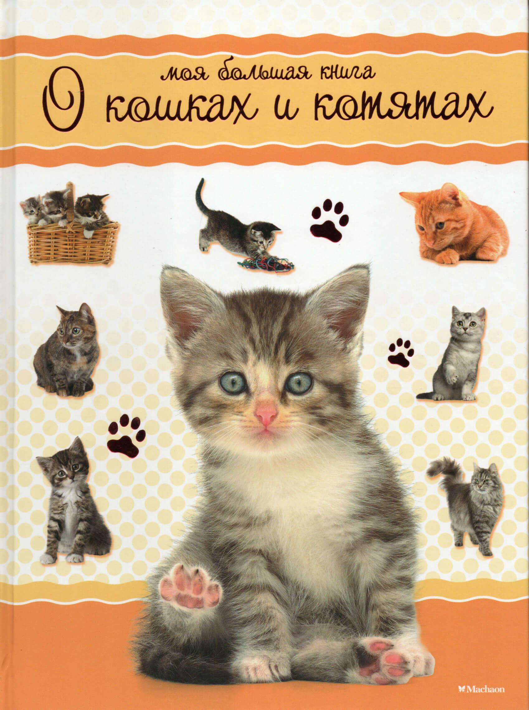 Моя большая книга о кошках и котятах. . Переплет —