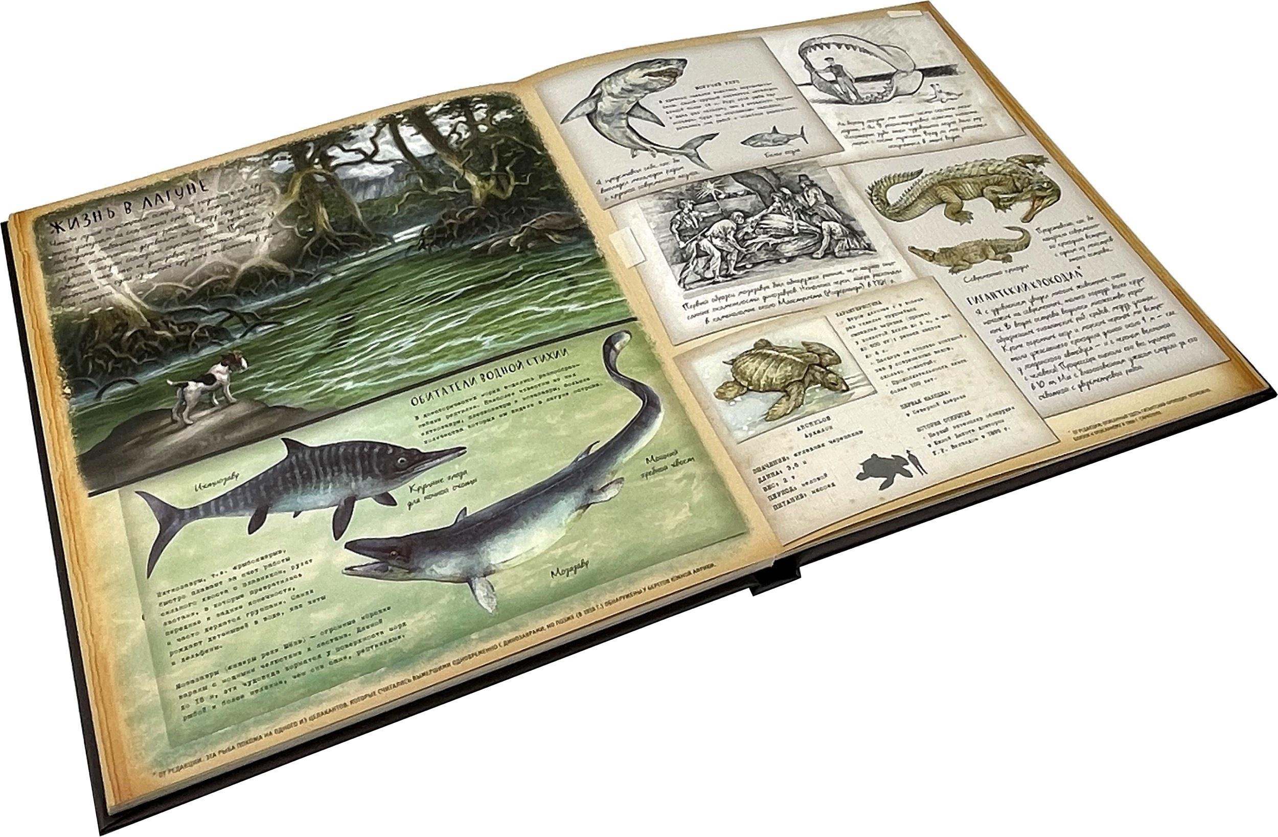 Динозавроведение. Поиски затерянного мира. . Переплет —
